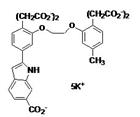 钙离子亚博体育官方在线探针Indo-1