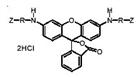 蛋白酶底物